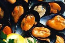1-2-shell-mussel